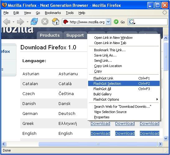 FlashGot Mass Downloader